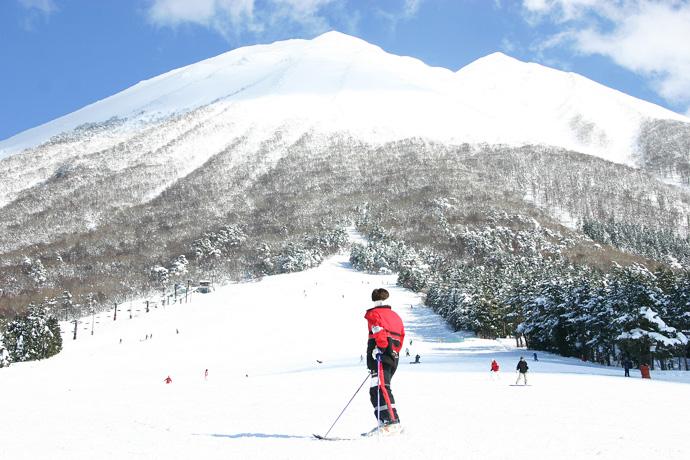 大山スキー場をエリアで紹介!